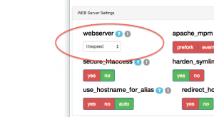DirectAdmin Integrates LiteSpeed Web Server into CustomBuild 2.0!