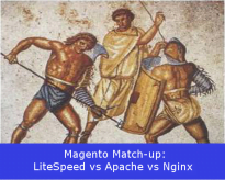 LiteSpeed vs Apache vs Nginx, Who Does Magento Hosting Better?