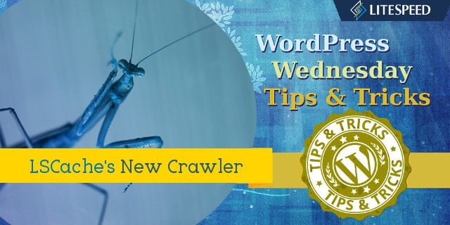 WpW: Crawl Your Site; Make it Fly!