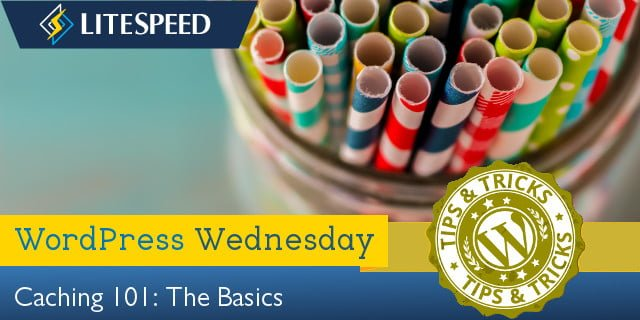 WordPress Wednesday: Caching 101