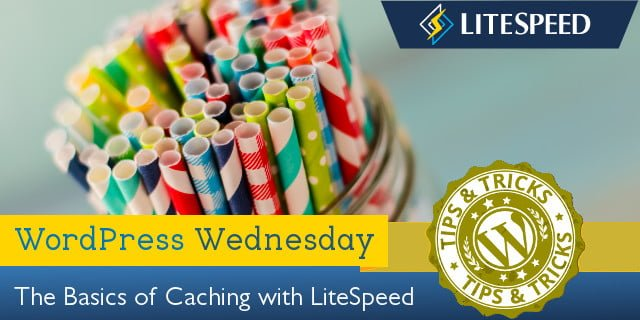 WpW: LiteSpeed Caching 101