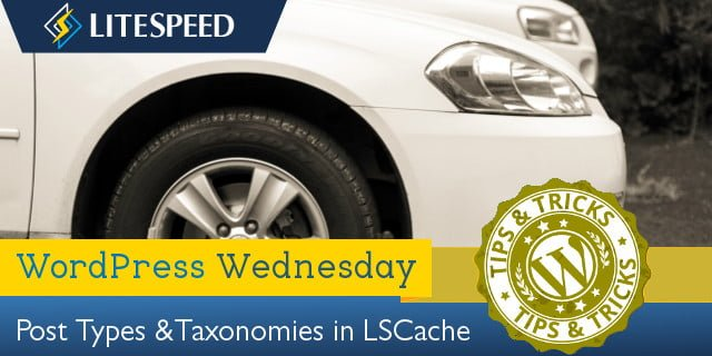 WpW: LiteSpeed Cache, Post Types and Taxonomies