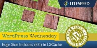 WpW: ESI and LiteSpeed Cache