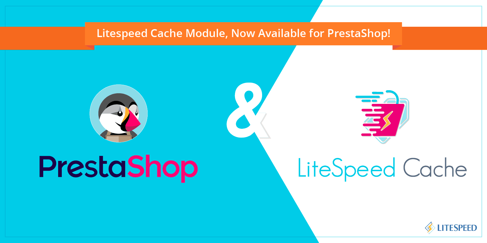 LiteSpeed Cache Module, Now Available for PrestaShop!