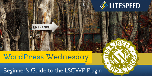 WordPress Wednesday: Beginner's Guide to LiteSpeed Cache for WordPress