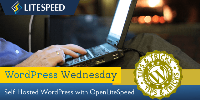 WordPress Wednesday: Installing OpenLiteSpeed WordPress and LSCache