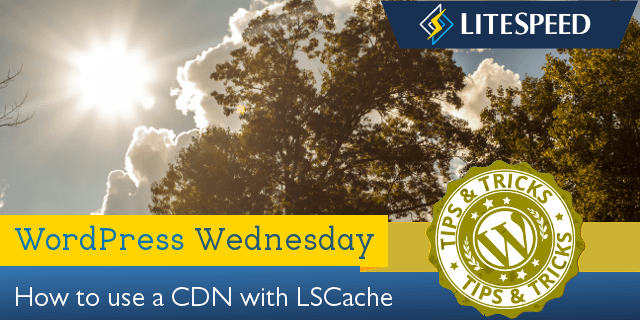 WpW: How to Set Up a CDN with LSCache