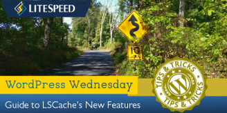 WpW: LSCache New Feature Roundup!