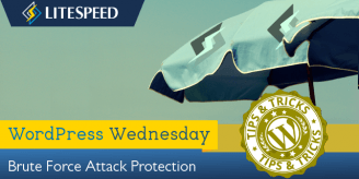 WpW: Brute Force Attack Protection