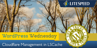 WpW: Cloudflare Management in LSCache