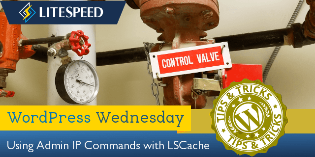 WordPress Wednesday: Using Admin IP Commands with LSCache