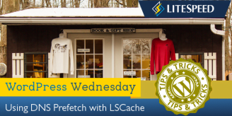 WpW: DNS Prefetch with LiteSpeed Cache