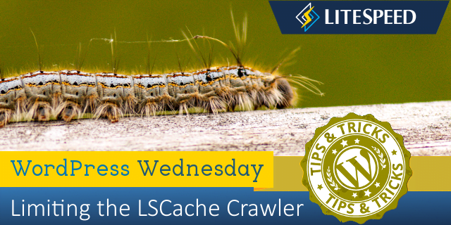 WordPress Wednesday: Limiting the LiteSpeed Cache Crawler
