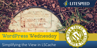 WpW: Simplifying the View in LSCache