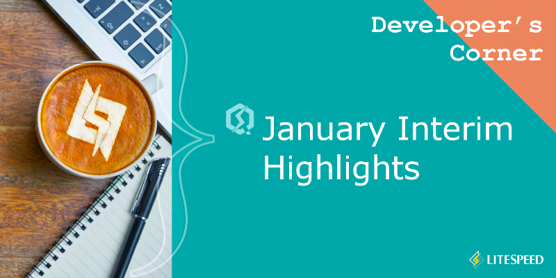 Developer's Corner: January Interim Highlights