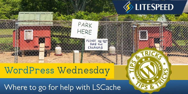 WordPress Wednesday: Where to go for LiteSpeed Cache Help