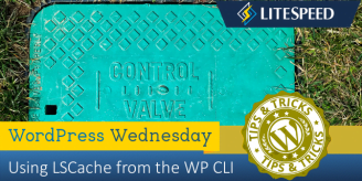 WpW: Using LSCache with the WordPress CLI