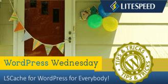 WpW: LSCache for WordPress for Everybody!