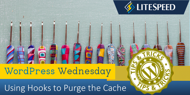 WordPress Wednesday: Purging LiteSpeed Cache via WordPress Hooks
