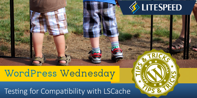 WordPress Wednesday: Is My Plugin Compatible With LiteSpeed Cache for WordPress?