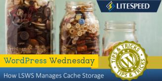 WpW: Understanding Cache Storage