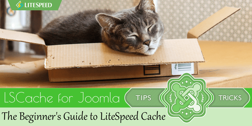 JT: The Beginner's Guide to LSCache for Joomla