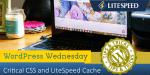 WpW: Critical CSS and LiteSpeed Cache