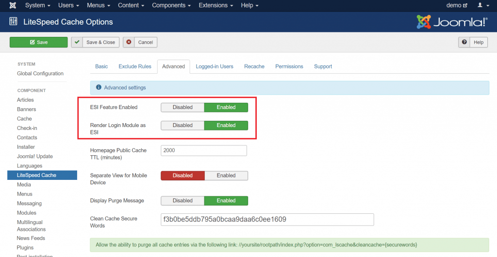 Using ESI in Joomla: Advanced configuration screen