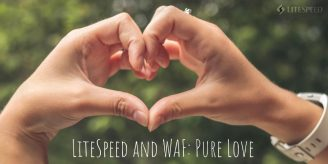 Why LiteSpeed and WAF is Pure Love