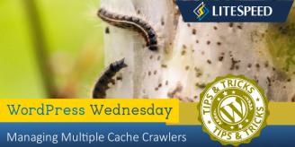 WpW: Managing Multiple Cache Crawlers
