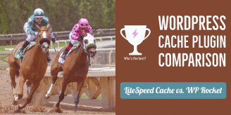 LiteSpeed Cache vs. WP Rocket